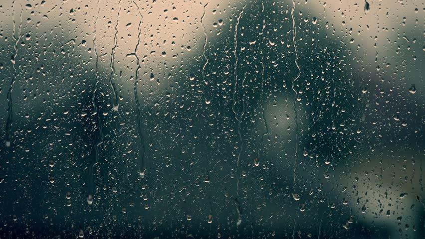 Storm Summary Heavy Rain And High Winds Lash Newfoundland