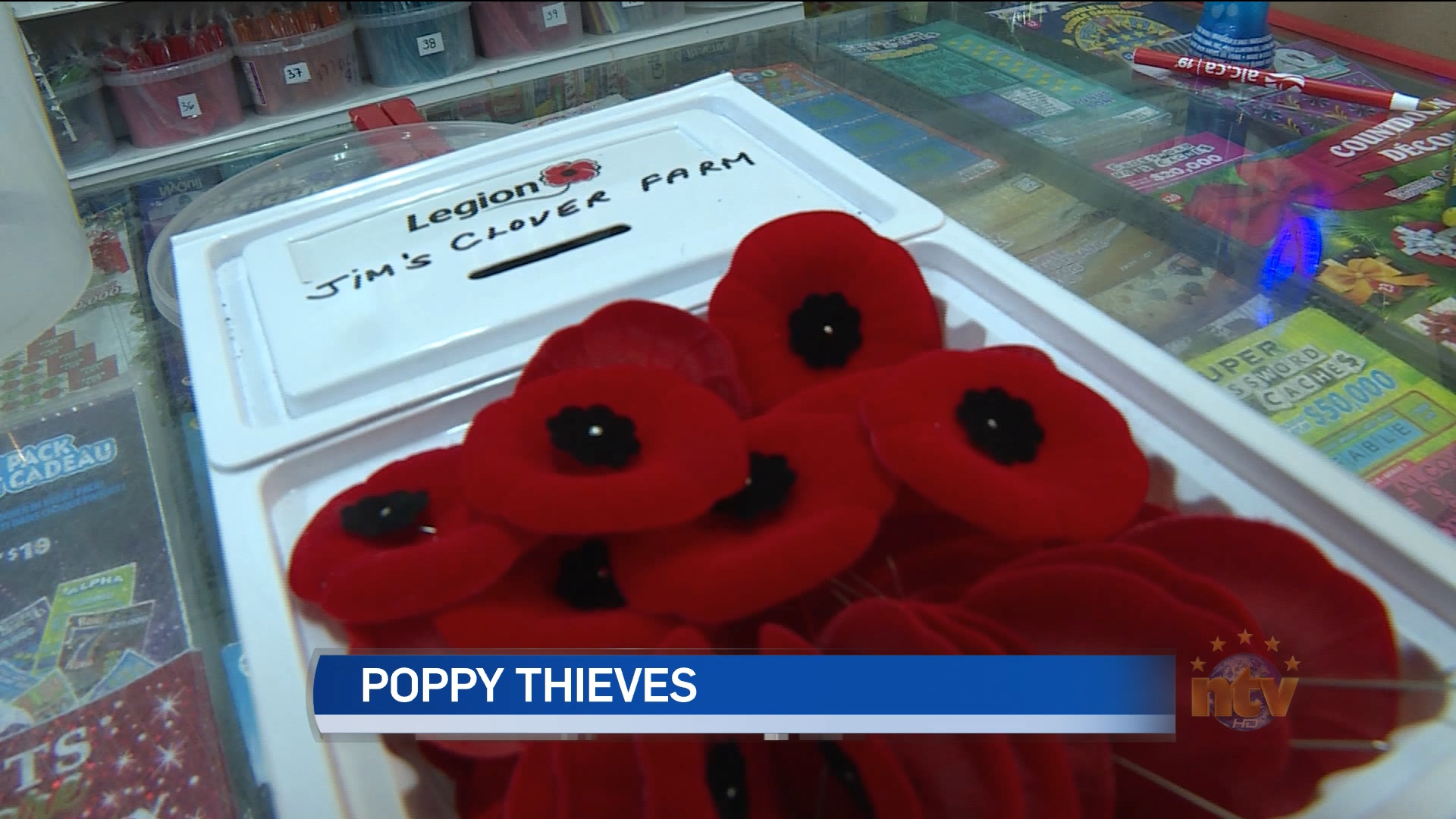 Poppy trays stolen in Grand Falls-Windsor - NTV News